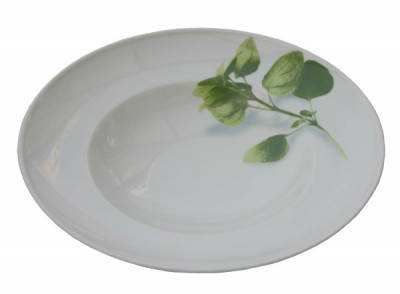 Gural Reno diep bord/pastabord basilicum